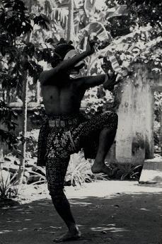 monkey dance 4