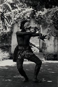 monkey dance 5