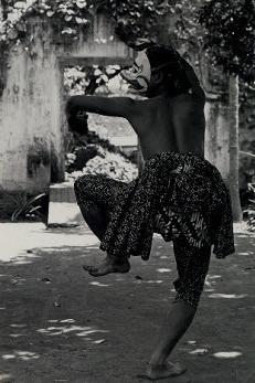 monkey dance 6